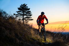 Enduro Cyclist Riding the Mountain Bike on the Rocky Trail at Sunset. Active Lifestyle Concept. Space for Text. Royalty Free Stock Photo
