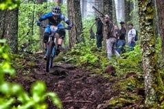 2013 enduro dell'Oregon - Josh Carlson Fotografie Stock Libere da Diritti