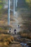 Enduro fuori-roading nel raduno russo 2014 della corsa di cinque giorni Fotografia Stock Libera da Diritti