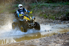 Enduro que off-roading na reunião de cinco dias 2014 do russo da raça Fotografia de Stock