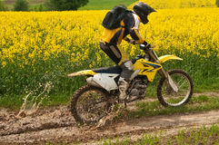 Enduro rider. Man on motocross enjoying ride. Yellow meadow at the background Royalty Free Stock Images