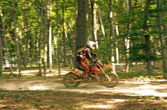 Enduro rider in forest Royalty Free Stock Image