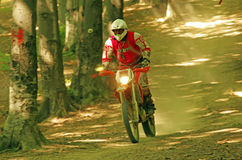 Endurocross Royalty Free Stock Images