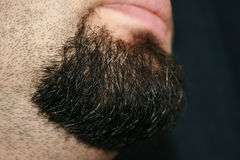Enegreça a barba Fotografia de Stock Royalty Free