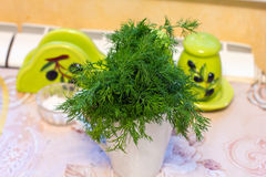 eneldo en un haz en la cocina en la taza Foto de archivo