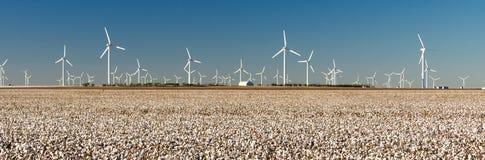 Energía alternativa Texas Cotton Field Agriculture de las turbinas de viento fotografía de archivo libre de regalías