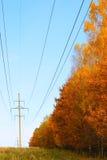 Energía del otoño Foto de archivo