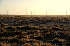 Energía eólica en el Gobi Fotos de archivo libres de regalías