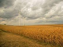 Energía eólica en los campos de maíz Foto de archivo libre de regalías