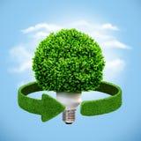 Energía conceptual del eco Lámpara y flechas verdes de la hierba Reciclaje de concepto Imagen de archivo