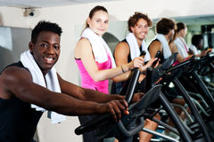 Energetic group working out together Royalty Free Stock Image