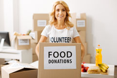 Energetic sweet woman collecting donations for people in need. You can add something. Admirable young devoted lady holding a box full of food while working pro royalty free stock photography