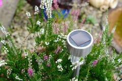 energetyczna ręka odizolowywający panelu słoneczny słońca biel Zdjęcie Stock