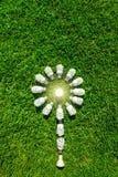 Energetyczne skuteczne żarówki na zielonej trawie obrazy stock