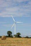 energetycznej rośliny wiatr Fotografia Stock