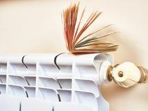energetyczny dostosowanie grzejnik save Save energię i pieniądze pojęcie Fotografia Royalty Free
