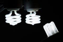 Energi-besparing kulor Royaltyfria Bilder