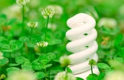 Energi-besparing lampa i grönt gräs Arkivbild