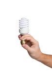 Energi - besparinglampa i den manliga handen Royaltyfria Foton