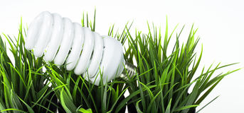 Energi - sparande ljus kula i grönt gräs Royaltyfri Foto