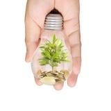 Energi - sparande ljus kula, idérik idé för ljus kula i hand Royaltyfri Foto