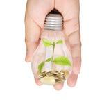 Energi - sparande ljus kula, idérik idé för ljus kula i hand Royaltyfria Foton