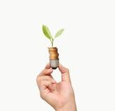 Energi - sparande ljus kula, idérik idé för ljus kula i hand Royaltyfri Fotografi
