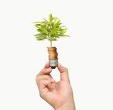 Energi - sparande ljus kula, idérik idé för ljus kula i hand Arkivfoton