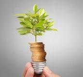 Energi - sparande ljus kula, idérik idé för ljus kula i hand Arkivbild