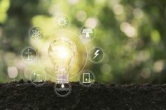 Energi - sparande ljus kula p? naturbakgrund f?r energi och id?rikt begrepp arkivfoton