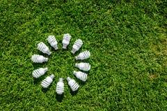 Energi - sparande ljusa kulor på grönt gräs royaltyfri fotografi