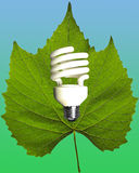 Energia de Eco Fotografia de Stock