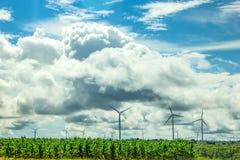 Energia de Eco da turbina Fotografia de Stock