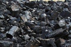 Energia del fuoco della natura degli alberi della legna da ardere Fotografia Stock