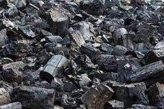 Energia del fuoco della natura degli alberi della legna da ardere Immagine Stock Libera da Diritti
