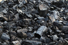 Energia del fuoco della natura degli alberi della legna da ardere Immagini Stock Libere da Diritti
