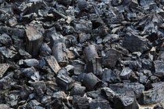 Energia del fuoco della natura degli alberi della legna da ardere Fotografie Stock