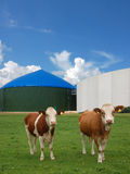 Energia do biogás Fotos de Stock Royalty Free
