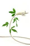 Energia ecologica Fotografie Stock Libere da Diritti