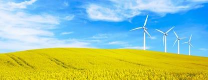 Energia renovável com as turbinas eólicas em montes amarelos das flores Fundo ambiental da ecologia para apresentações e Web site fotografia de stock