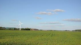Energia rinnovabile del mulino a vento video d archivio