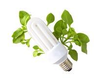 Energia verde Fotos de Stock Royalty Free