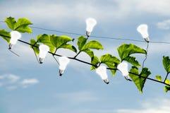Energia verde Immagini Stock Libere da Diritti