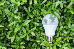 Energie - besparings LEIDENE Bol met verlichting in de groene aard backgr stock foto's