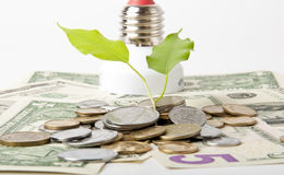 Energie - besparingslamp Royalty-vrije Stock Afbeelding
