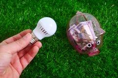Energie - de besparing, mens houdt een bollicht op een gazonachtergrond royalty-vrije stock afbeeldingen