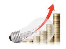 Energie - de Gloeilamp van de besparing Royalty-vrije Stock Foto