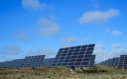 Energie rinnovabili al tramonto IV Immagini Stock Libere da Diritti