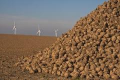 Energie, Zuckerrüben und Windturbinen Stockbilder