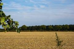 Energiedrähte gegen Stromleitungen in der Landschaft angesehen lizenzfreies stockfoto
